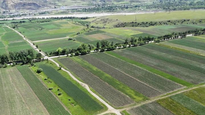 მიწების სისტემური და სპორადული წესით რეგისტრაციის პროცესი 2020 წლის 1 იანვრამდე გაგრძელდება